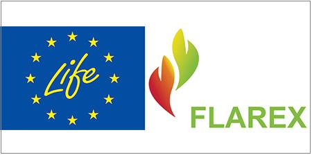 Life-Flarex
