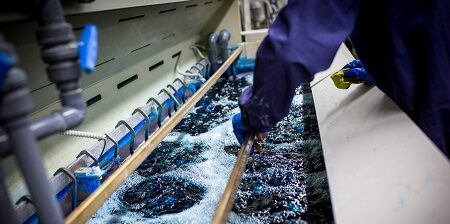 Brevetto per il recupero di metalli pesanti da acque reflue